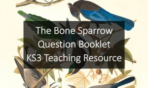 The Bone Sparrow Question Booklet | KS3 Teaching Resource