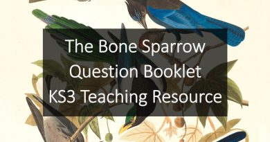 Bone_Sparrow_KS3